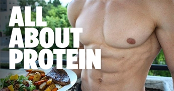 Proteins Role In Muscle Building